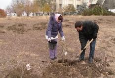 Экологический проект