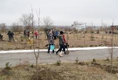 Экологический проект_18