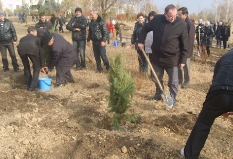 Экологический проект_5