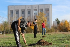 Посадка деревьев студентами рядом с университетом